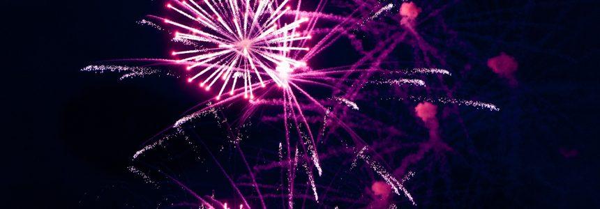 Fireworks & Animals